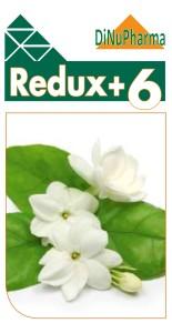titulo_Redux+6_con logo+foto