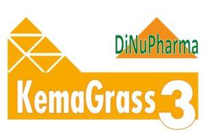 titulo_KemaGrass3_con logo